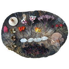 Anja Mulder Autumn collection