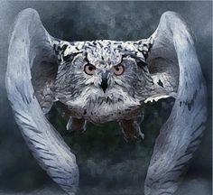 BELLA DONNA digital art - BELLA DONNA digital art - Hogwarts School (Owl Art)  https://youtu.be/7JwUXpCeBIU