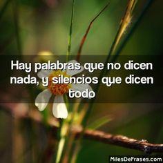 Hay palabras que no dicen nada, y silencios que dicen todo #frases #citas
