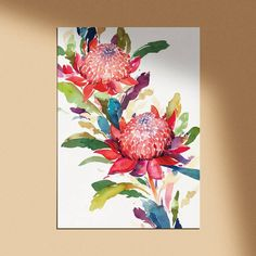 Watercolor Art Lessons, Watercolour Tutorials, Watercolor Artwork, Watercolor Illustration, Watercolor Flowers, Painting Flowers, Australian Native Flowers, Natalie Martin, Angel Art