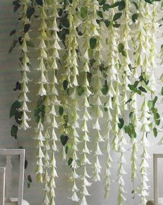 http://bios.weddingbee.com/pics/26489/gazebo_flower_garlands.jpg