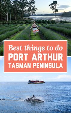 Most of the people who visit Port Arthur do it on a day trip from Hobart, but there are so many activities on the Tasman Peninsula that it really deserves a few days to properly explore! | A Globe Well Travelled Port Arthur, Things To Do, Good Things, Lost Soul, Day Trip, Wander, Travel Destinations, Globe, Wellness