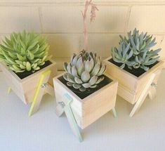 DIY Garden Decorating Ideas on a Budget – Wooden Planter Boxes mini wooden planters Wooden Planter Boxes, Diy Planter Box, Diy Planters, Planter Ideas, Planter Pots, Small Succulents, Diy Garden, Garden Ideas, Cactus Y Suculentas