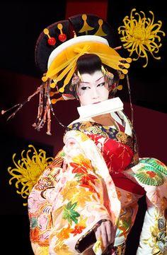 Saotome Taichi (早乙女 太一), a well-known Onnagata (女形), male actors that impersonate women in Japanese theatre (kabuki). I can't WAIT to see Kabuki! Japanese Geisha, Japanese Beauty, Japanese Kimono, Geisha Japan, Japanese Male, Geisha Art, Samurai, Yukata, Memoirs Of A Geisha