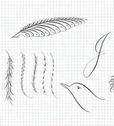 A Place To Flourish: Calligraphy Flourish Friday - Feathers