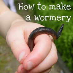 Great tutorial: How to make a wormery  - eco garden activity for kids