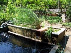1000 images about bog filter on pinterest water garden for Pond bog filter