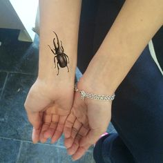 beetle in frame tattoos - Hledat Googlem