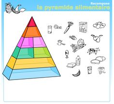 Nutrition, Circuit, Animation, School, Meal, Food Pyramid, Sustainability Kids, Boxes For Gifts, Fruits And Vegetables