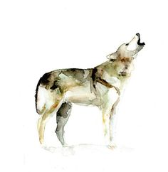 Original Wolf Watercolor Painting. Animal by Zendrawing on Etsy