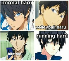 Sports haru OML this is so true i watched prince of stride, free, and haikyu i was like haru <3