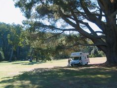 Myrtle Park Camp Area, Paul Smedley | grounds - Google Search