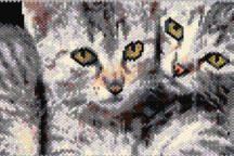 Cuddling Cats Pattern
