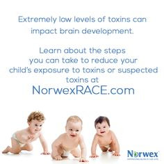 The impact of toxins on children has been studied for the past 30 years; researchers discovered that extremely low levels of toxins can impact brain development and that subtle shifts in the intellectual abilities of individual children have a big impact on the number of challenged or gifted children in a population. We include a must-watch video on our blog today to learn about steps you can take to reduce children's exposure to toxins or suspected toxins.
