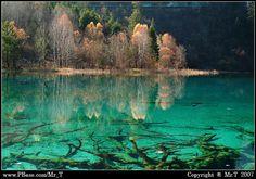 Fairyland - Jiu Zai Gou in my home province Sichuan, China