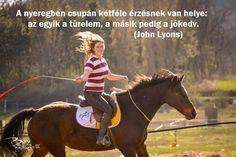 Ti mit szoktatok még érezni mikor a nyeregben ültök? Horse Riding, Horses, Random, Animals, Animales, Animaux, Animal, Animais, Horse
