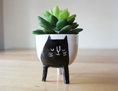 Ships on December 16. While we cant guarantee delivery for Christmas, this should be just enough time to get to addresses in Canada or the US.  A black and white cat planter, perfect for seedlings and succulents! This planter comes in two different sizes and this is the smaller one. Both have three legs and a drainage hole in the bottom. Each piece is thrown on the potters wheel with white, stoneware clay that is sourced in North America. The pieces are then decorated with colourful engobes…