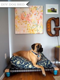 Diese Hundebetten sind so süß - dein Hündchen würde eins sicher lieben! - gewebtes Hundebett