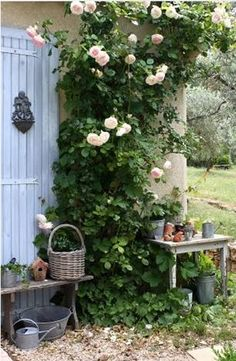 vining roses, old door and small tables.....beautiful vignette