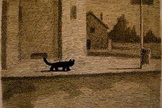 Animalarium: Franco Matticchio - Black Cat Blues