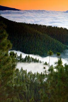 Mar de nubes, #Tenerife #IslasCanarias