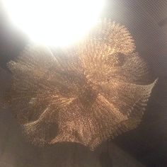 Ruth Asawa Artist Sculptures Exhibition De Young Museum San Francisco