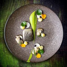 Murray cod, Nasturtium purée, Baby turnips, Daikon, Rock oysters, Black caviar.... by @alvinssto For more culinary inspirations join our Cookniche community. Direct link in bio @Cookniche