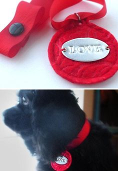 Pet Lovers - Check these Creative DIY Projects - Page 3 of 7 - MotivaNova