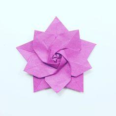 Spring Star Sakura designed by @alibhmni  tutorial coming soon  #origami #flower #origamiflower #star #origamistar #sakura #paperfolding #paper #crafts #paperkawaii