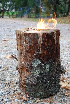 """Fire Log"" What you'll need:  - A log from the yard  - A chainsaw  - lighter fluid  - matches or a torch    First up, using the chainsaw cut the log like a pizza 2/3 of the way. Next up pour some lighter fluid down in the center and light her up!"
