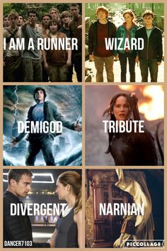 """""""I am a runner, wizard, demigod, tribute, divergent, and a Narnian."""" The Maze Runner, Harry Potter, Percy Jackson, The Hunger Games, Divergent, Narnia."""