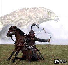 sólyom és ló,neked mit jelent?