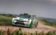 Download wallpapers Pontus Tidemand, 4k, WRC, Skoda Motorsport, race, Skoda Fabia WRC