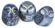Three owls - acrylic on rocks | Painted rocks by Roberto Rizzo | www.robertorizzo.com