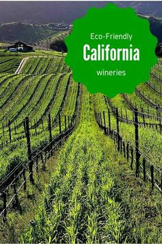 Eco-Friendly California Wineries in Napa Valley and Sonoma, Paso Robles, and other winegrowing regions of California Wine Country