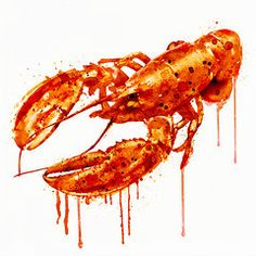 Lobster Art - Crawfish watercolor painting by Marian Voicu