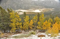 Rocky Mountain National Park Co. Photo by Charles Mooney