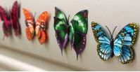 3D Butterfly realistic Double Wing www.storeqatar.com