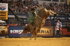 PBR ‏@PBR January 24, 2016 MONSTER RIDE: @jbmauney conquers Long John for a 90.25, and the lead at #PBROKC.