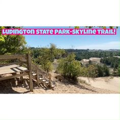 Ludington State Park's Skyline Trail Includes Best Things to do! Hiking, biking, kayaking, camping and beaches! Rent Kayaks or Watercraft, check out the beach and boardwalk . Best State Park in Michigan, perfect for bird watching, and sight seeing! #ludingtonmichigan #ludingtonmichiganthingstodo #ludingtonstatepark #ludington #ludingtonstateparkmichigan #ludingtonmi #michiganstateparks #michiganboardwalks Ludington Michigan, Ludington State Park, Michigan State Parks, Michigan Travel, Kayaks, Water Crafts, Go Camping, Bird Watching, Biking