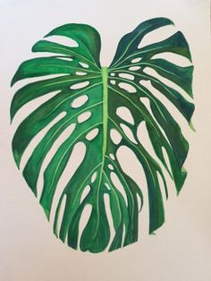 monstera deliciosa leaf print