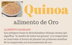 Conoce las propiedades de la quinoa e incorpórala a tu cocina con más de 10 recetas con quinoa