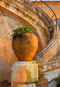 terracotta container ,It's all about the pot (Urn) Terracota, Olive Jar, Under The Tuscan Sun, Garden Urns, Pot Plante, Terracotta Pots, Toscana, Architecture Details, Old World