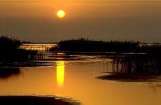 peisaje delta dunarii - Google Search