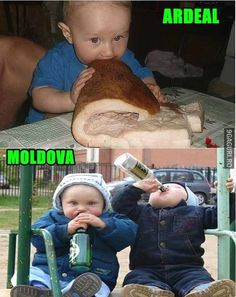Stupid Funny Memes, Funny Texts, The Funny, Funny Images, Funny Pictures, Moldova, Sarcastic Humor, Funny Comics, I Laughed