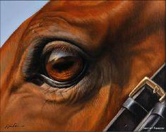 Jaime Corum painting of horse eye