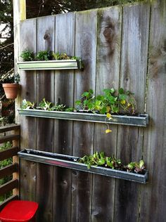 A garden planted in re-purposed rain gutters. Works if you have wood dividers on your balcony