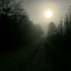 My road on a foggy morning