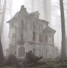 The stone house in the woods didn't seem so frightening on this her second visit, perhaps because she at least now knew upon which door it was safe to knock. Old Abandoned Houses, Abandoned Buildings, Abandoned Places, Old Houses, Creepy Houses, Spooky House, Haunted Houses, Spooky Places, Haunted Places