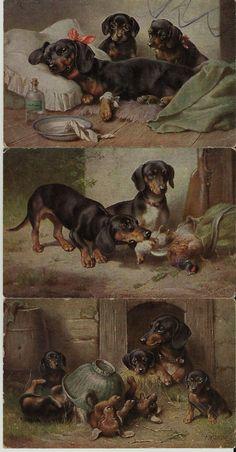 Carl Von Reichert 3 Poscards with Dogs #dachshund Dackel | eBay